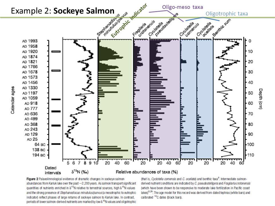 Oligo-meso taxa Example 2: Sockeye Salmon Eutrophic indicator Oligotrophic taxa