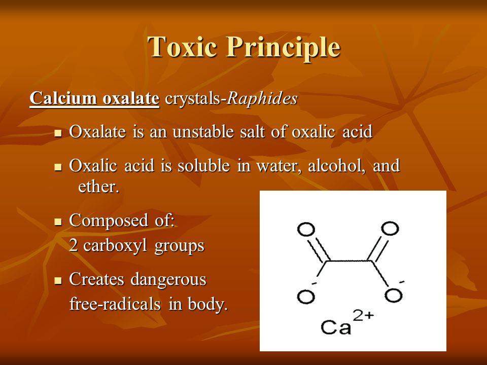 Toxic Principle Calcium oxalate crystals-Raphides Oxalate is an unstable salt of oxalic acid Oxalate is an unstable salt of oxalic acid Oxalic acid is