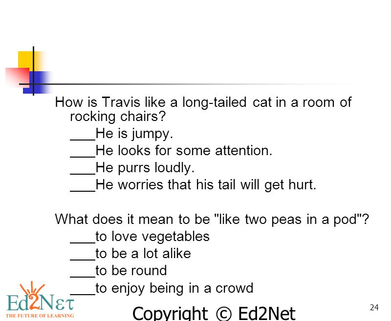 Copyright © Ed2Net Learning, Inc. 24 How is Travis like a long-tailed cat in a room of rocking chairs? He is jumpy. He looks for some attention. He pu