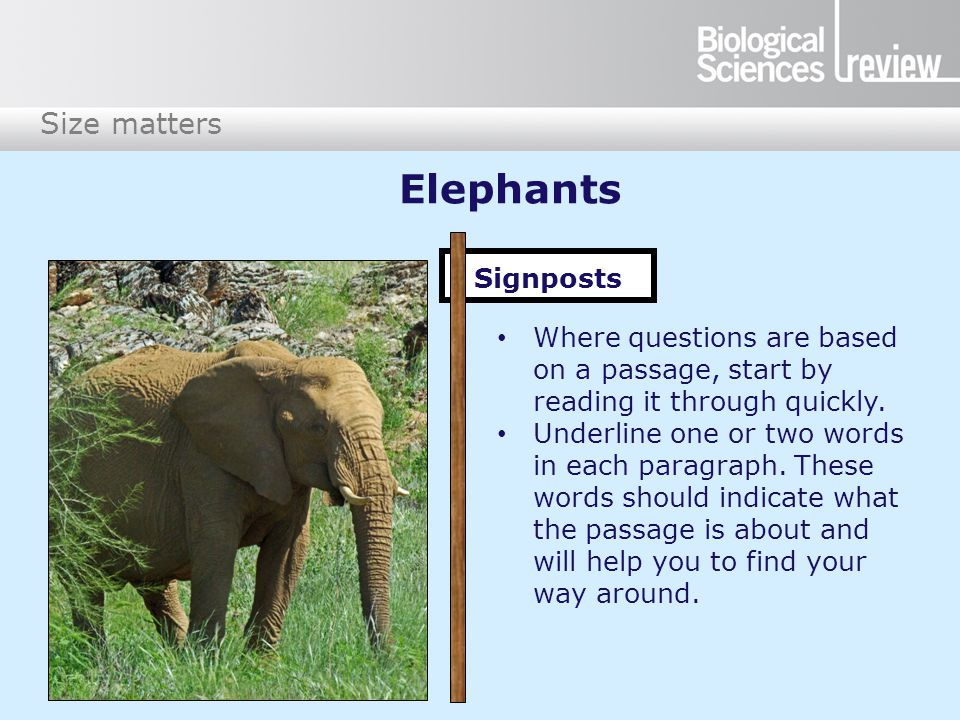 Size matters Elephants Signposts Where questions are based on a passage, start by reading it through quickly.