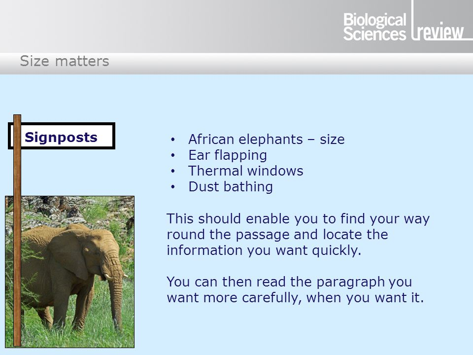 Size matters African elephants – size Ear flapping Thermal windows Dust bathing This should enable you to find your way round the passage and locate the information you want quickly.
