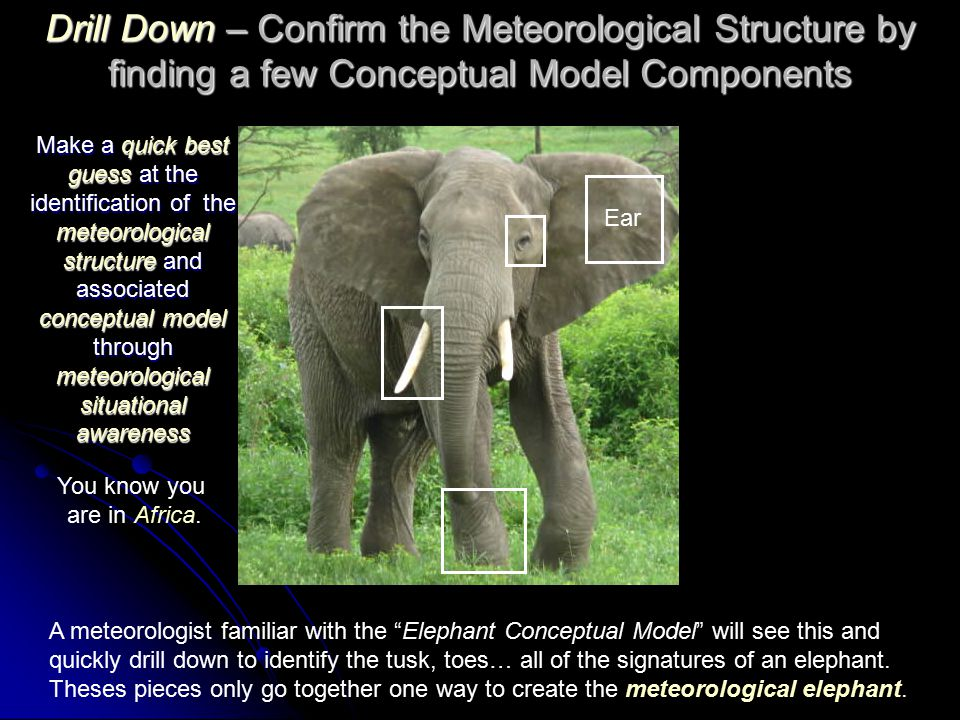 Drill Down – Confirm the Meteorological Structure by finding a few Conceptual Model Components A meteorologist familiar with the Elephant Conceptual Model will see this and quickly drill down to identify the tusk, toes… all of the signatures of an elephant.