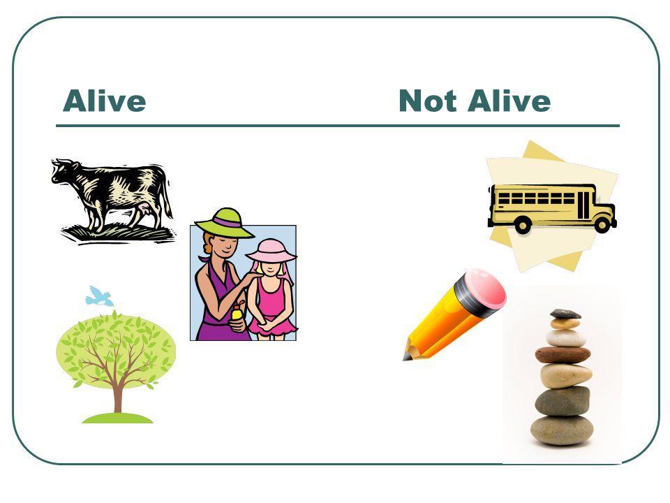 AliveNot Alive