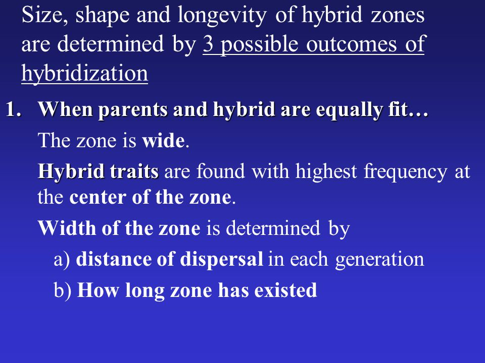 Size, shape and longevity of hybrid zones are determined by 3 possible outcomes of hybridization 1.When parents and hybrid are equally fit… The zone i