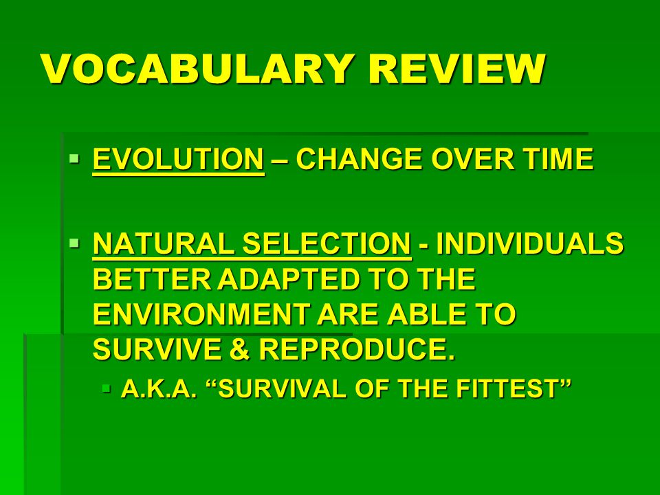 VOCABULARY REVIEW  EVOLUTION – CHANGE OVER TIME  NATURAL SELECTION - INDIVIDUALS BETTER ADAPTED TO THE ENVIRONMENT ARE ABLE TO SURVIVE & REPRODUCE.