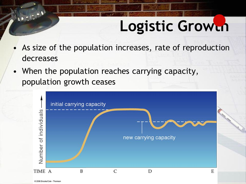 Logistic Growth As size of the population increases, rate of reproduction decreases When the population reaches carrying capacity, population growth ceases