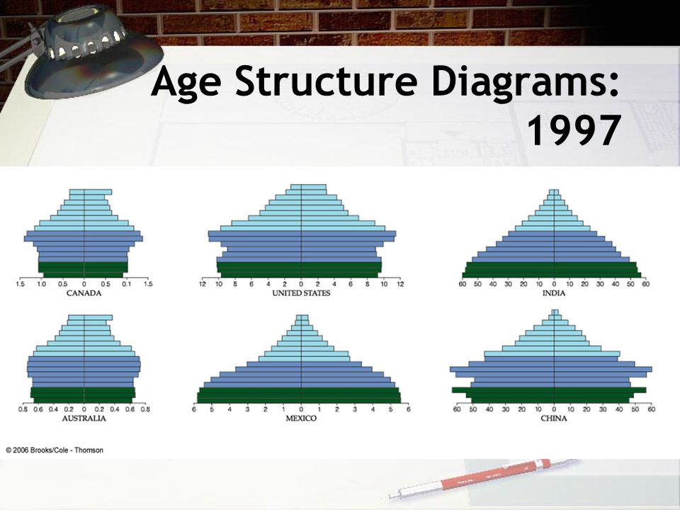 Age Structure Diagrams: 1997