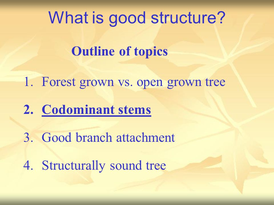 What is good structure. 1.Forest grown vs.