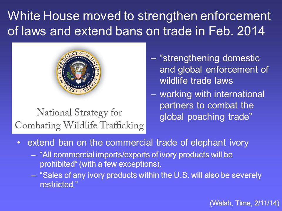 White House moved to strengthen enforcement of laws and extend bans on trade in Feb.