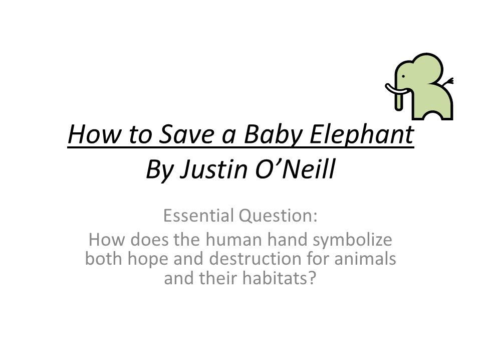 How to Save a Baby Elephant By Justin O'Neill Essential Question: How does the human hand symbolize both hope and destruction for animals and their ha