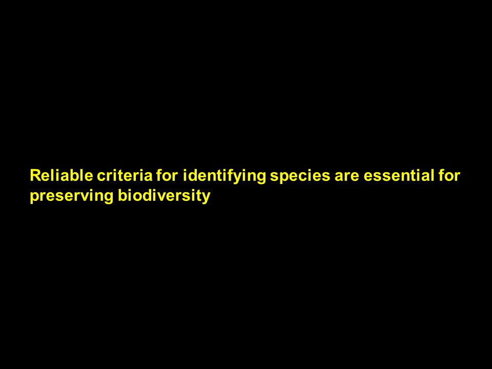 Reliable criteria for identifying species are essential for preserving biodiversity