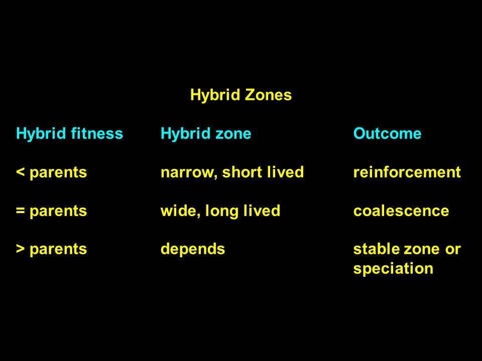 Hybrid Zones Hybrid fitnessHybrid zoneOutcome < parentsnarrow, short livedreinforcement = parentswide, long livedcoalescence > parentsdependsstable zone or speciation