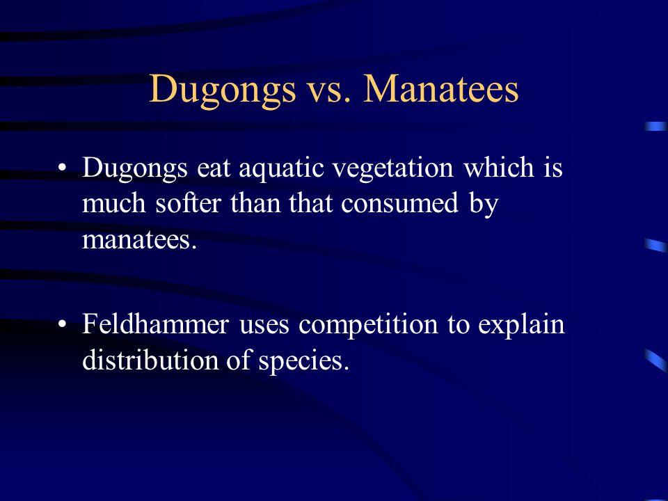 Dugongs vs.