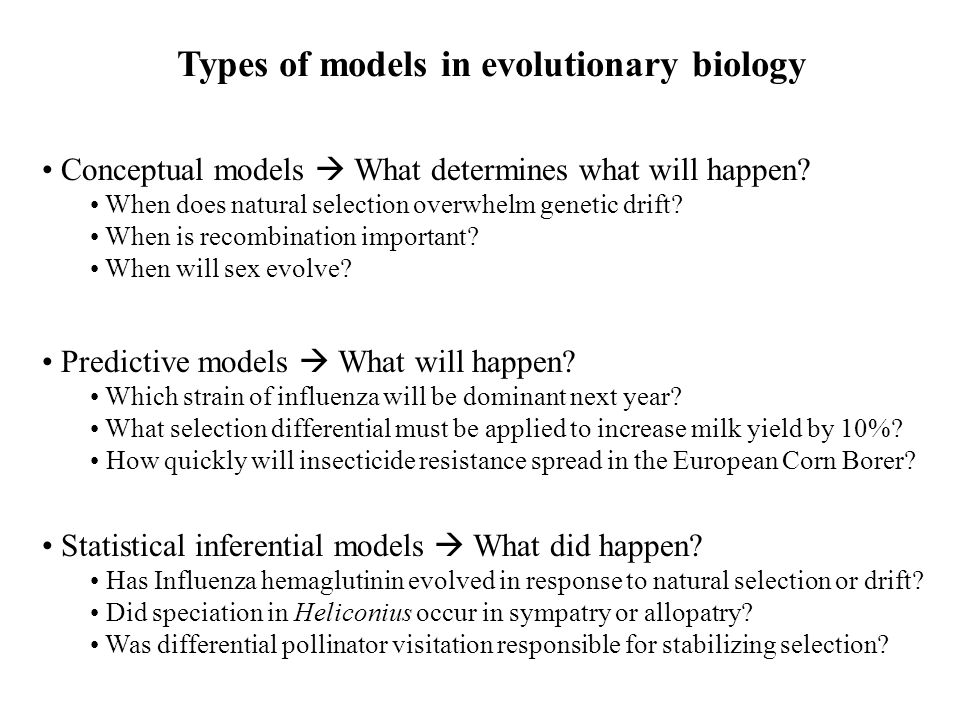 Types of models in evolutionary biology Conceptual models  What determines what will happen.