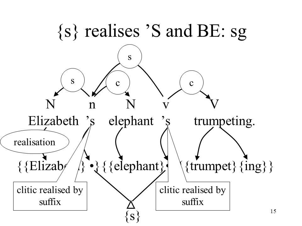 15 {s} realises 'S and BE: sg Elizabeth 's elephant 's trumpeting.