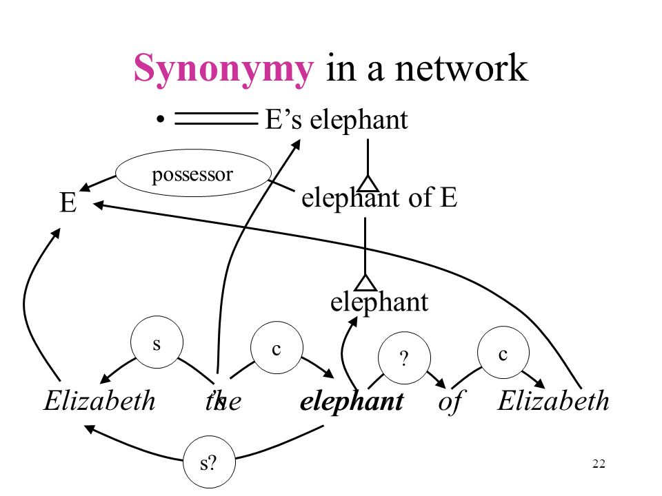 22 Synonymy in a network Elizabeth 's elephant s c s.