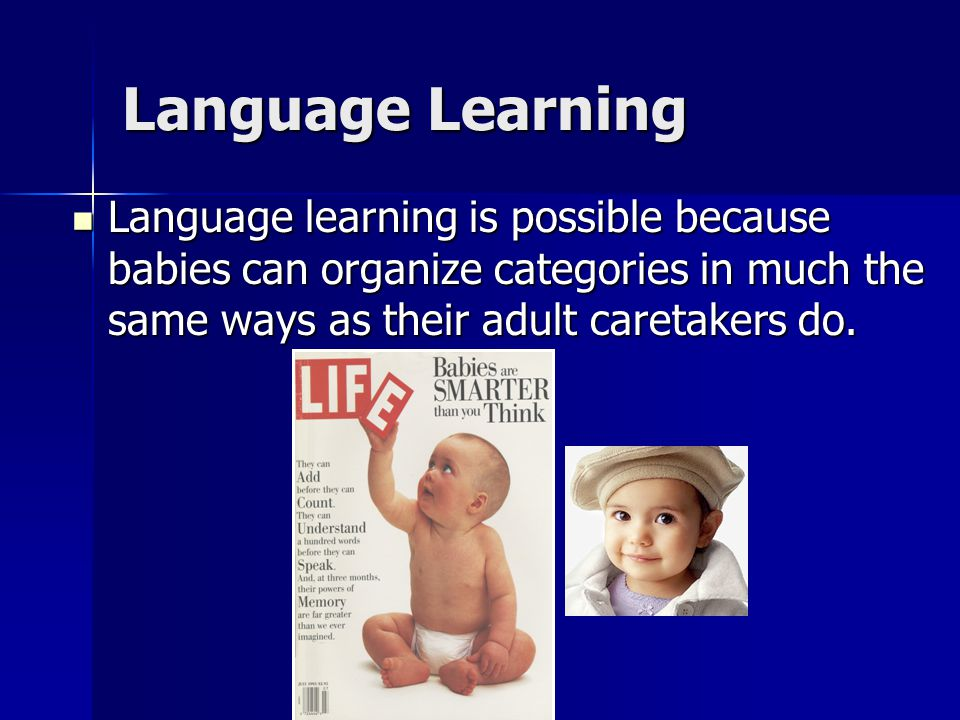 Language learning is possible because babies can organize categories in much the same ways as their adult caretakers do. Language learning is possible
