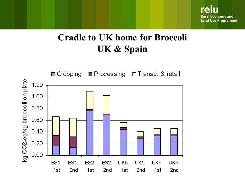 Cradle to UK home for Broccoli UK & Spain