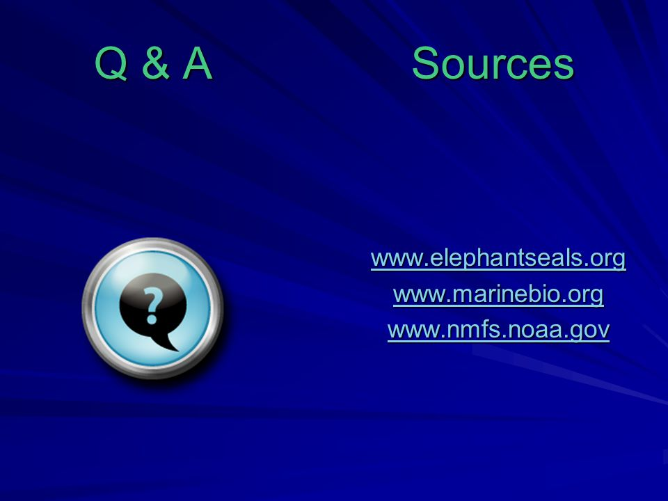 Q & A Sources www.elephantseals.org www.marinebio.org www.nmfs.noaa.gov