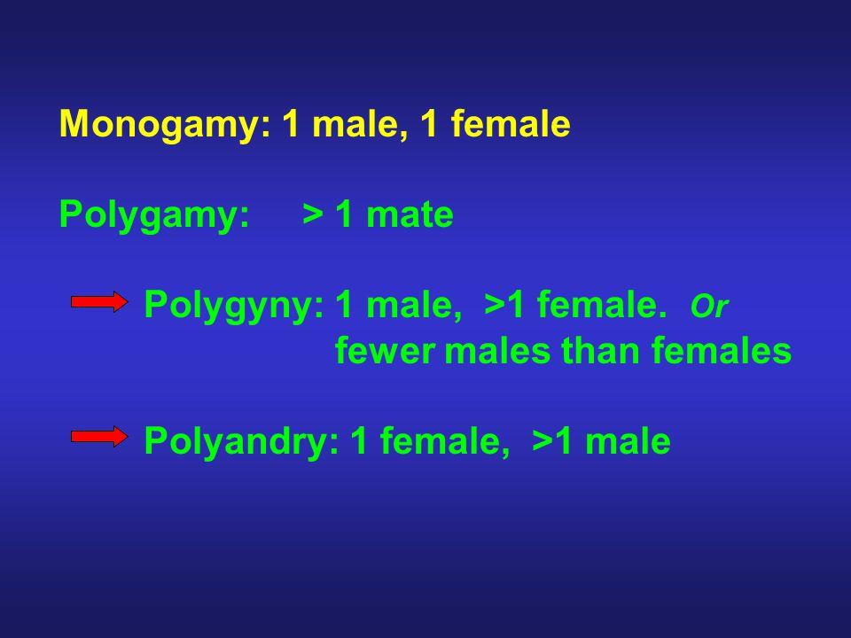 Monogamy: 1 male, 1 female Polygamy: > 1 mate Polygyny: 1 male, >1 female.