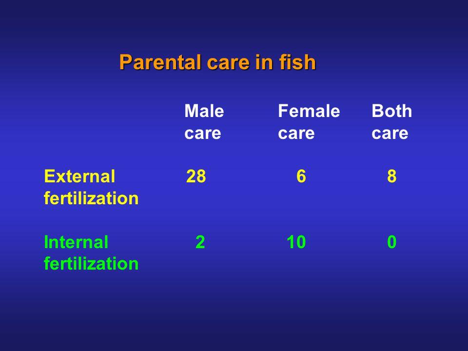 Parental care in fish Parental care in fish MaleFemaleBoth carecarecare External 28 6 8 fertilization Internal 2 10 0 fertilization