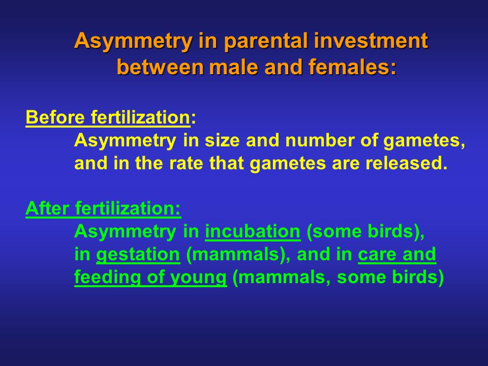 Mating systems and parental care Mating systems and parental care in birds and mammals in birds and mammals Mammals: Internal gestation, lactation.