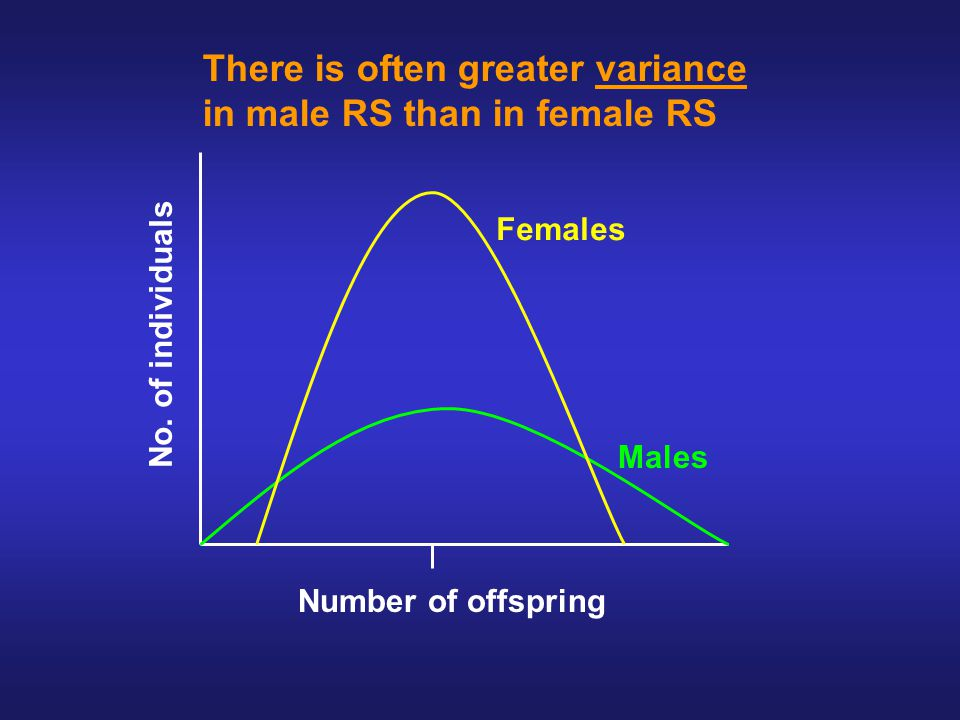 Females Males Number of offspring No.