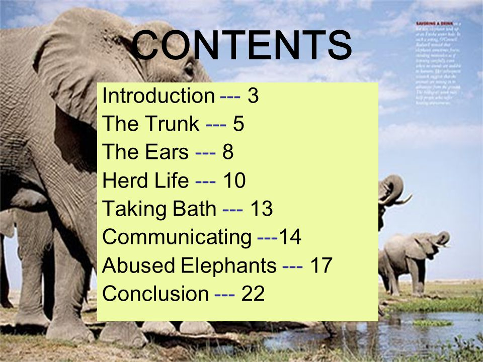 CONTENTS Introduction --- 3 The Trunk --- 5 The Ears --- 8 Herd Life --- 10 Taking Bath --- 13 Communicating ---14 Abused Elephants --- 17 Conclusion