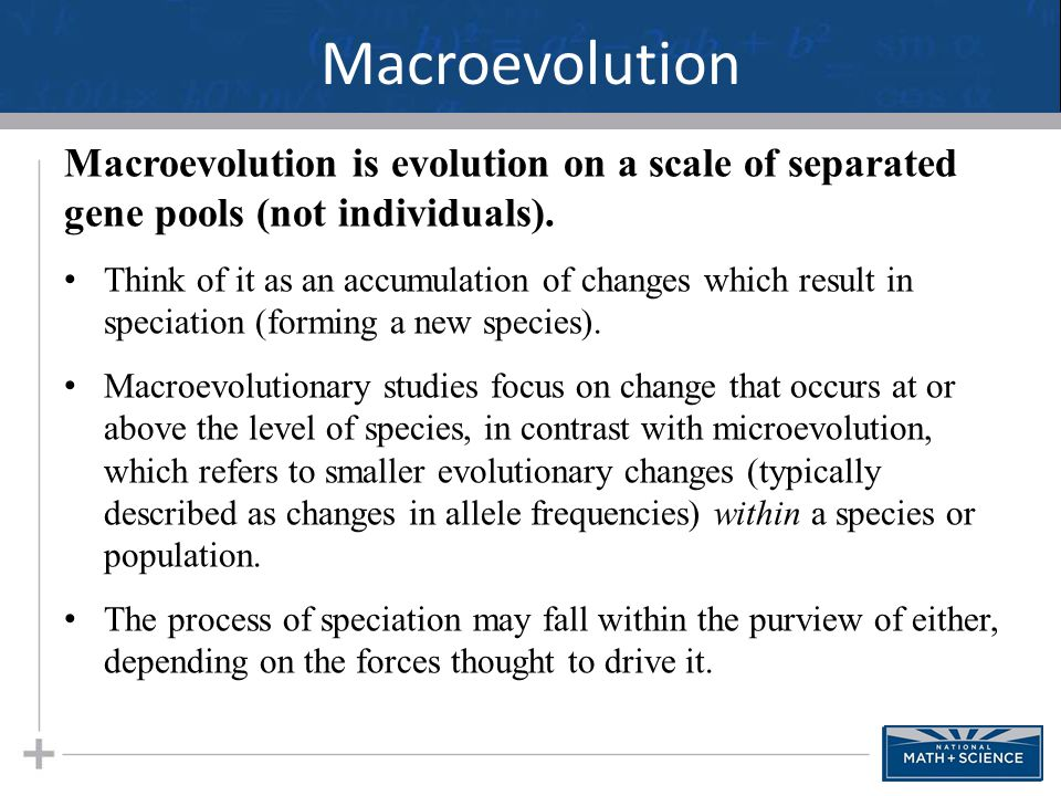Macroevolution Macroevolution is evolution on a scale of separated gene pools (not individuals). Think of it as an accumulation of changes which resul