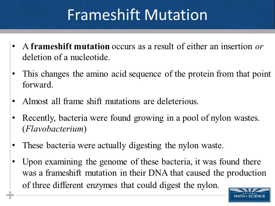Frameshift Mutation 29 A frameshift mutation occurs as a result of either an insertion or deletion of a nucleotide. This changes the amino acid sequen
