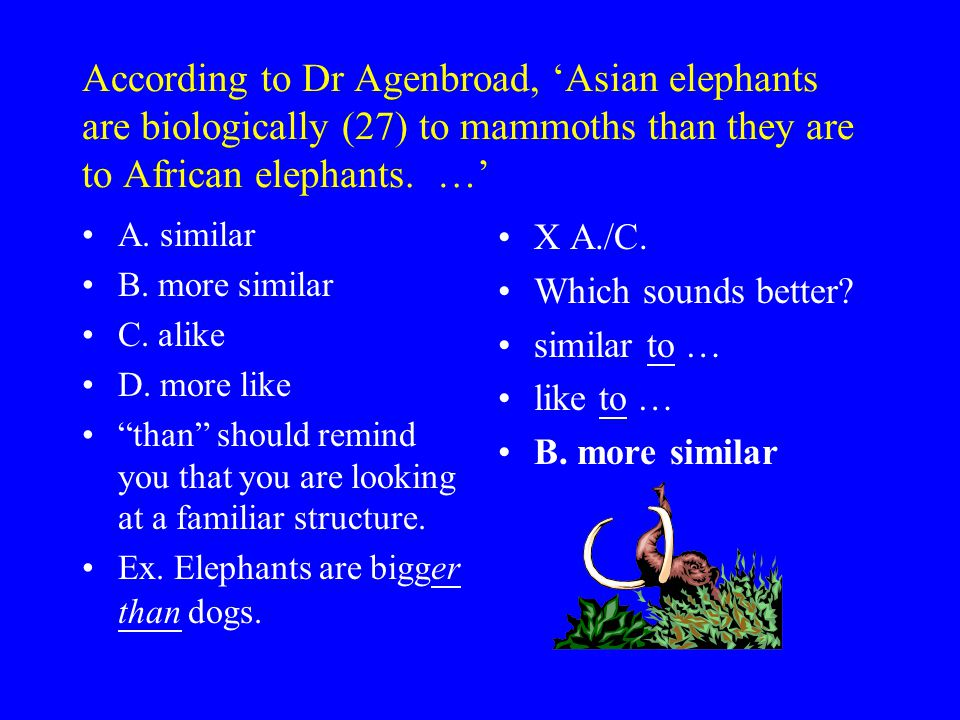According to Dr Agenbroad, 'Asian elephants are biologically (27) to mammoths than they are to African elephants.