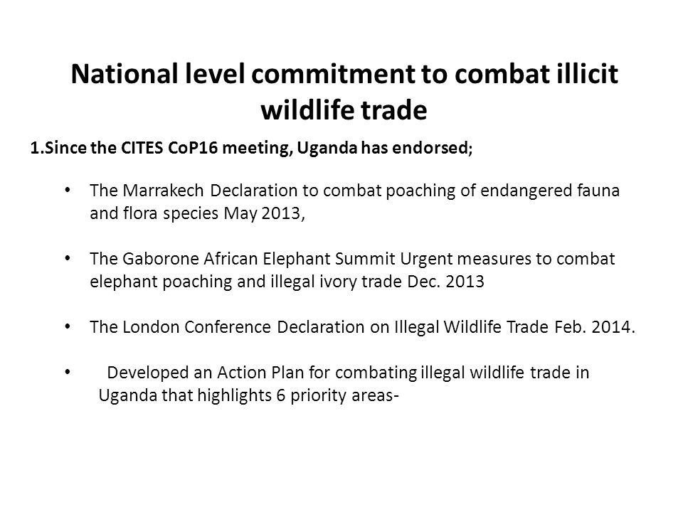 1.Since the CITES CoP16 meeting, Uganda has endorsed ; The Marrakech Declaration to combat poaching of endangered fauna and flora species May 2013, The Gaborone African Elephant Summit Urgent measures to combat elephant poaching and illegal ivory trade Dec.