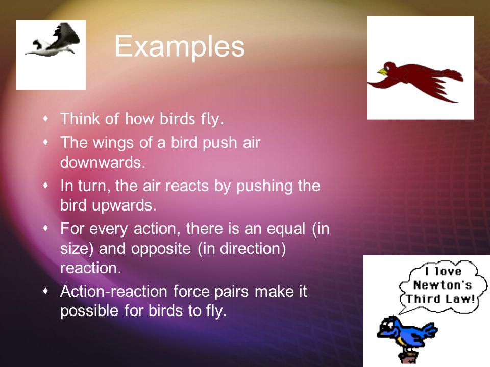 Newton's Third law  This is how sports work.  How do you hit a baseball?  A golf ball? A tennis ball?  How do you shoot a basketball?  How do you