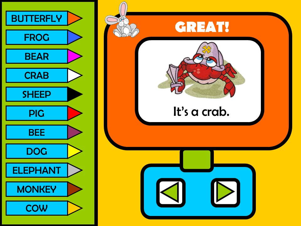 BUTTERFLY FROG BEAR CRAB SHEEP PIG BEE DOG ELEPHANT MONKEY COW It's a crab. GREAT!