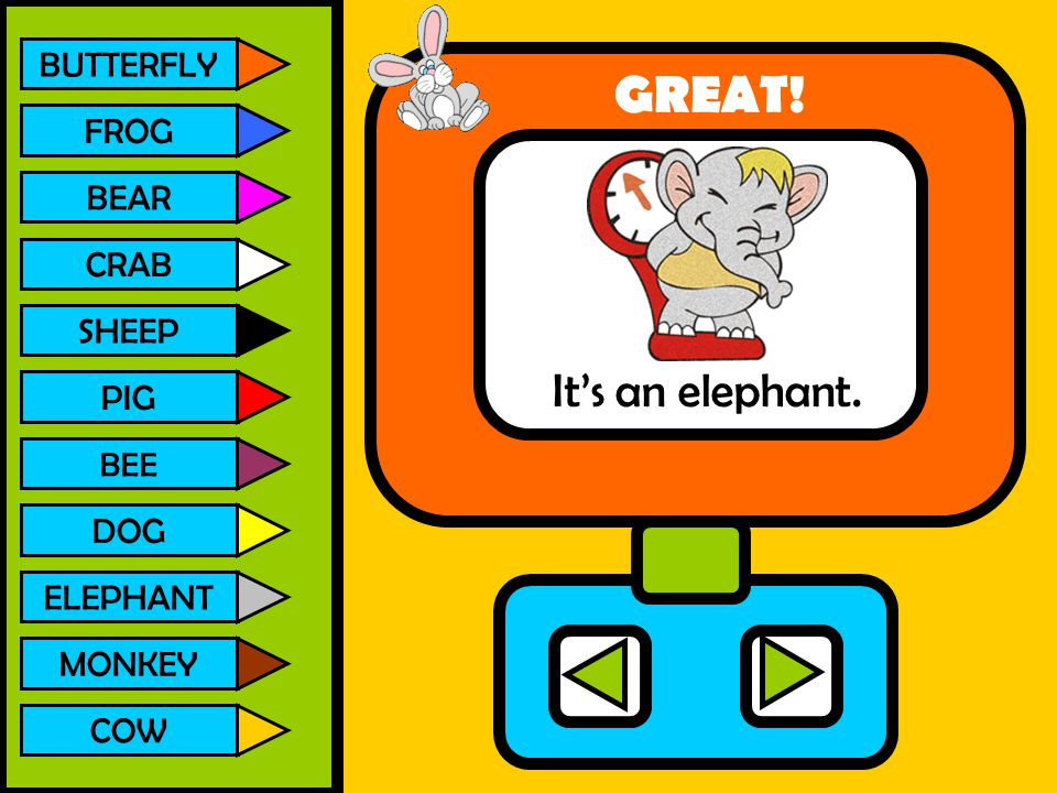 BUTTERFLY FROG BEAR CRAB SHEEP PIG BEE DOG ELEPHANT MONKEY COW It's an elephant. GREAT!