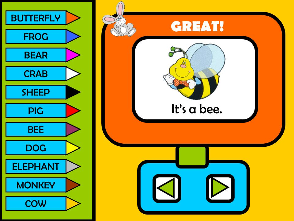 BUTTERFLY FROG BEAR CRAB SHEEP PIG BEE DOG ELEPHANT MONKEY COW It's a bee. GREAT!