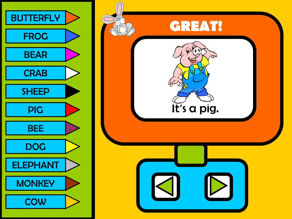 BUTTERFLY FROG BEAR CRAB SHEEP PIG BEE DOG ELEPHANT MONKEY COW It's a pig. GREAT!