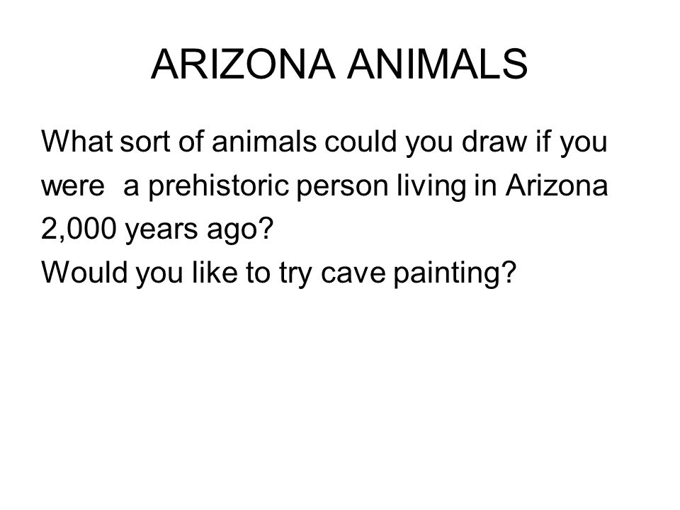 ARIZONA ANIMALS What sort of animals could you draw if you were a prehistoric person living in Arizona 2,000 years ago? Would you like to try cave pai