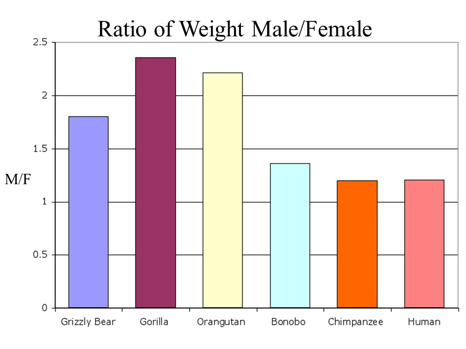 Ratio of Weight Male/Female M/F