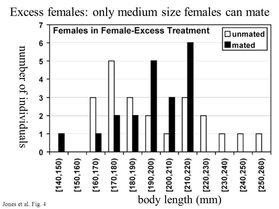 number of individuals body length (mm) Jones et al.