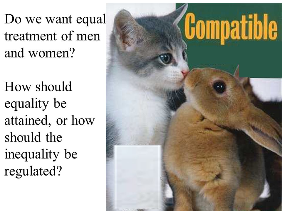 Do we want equal treatment of men and women.