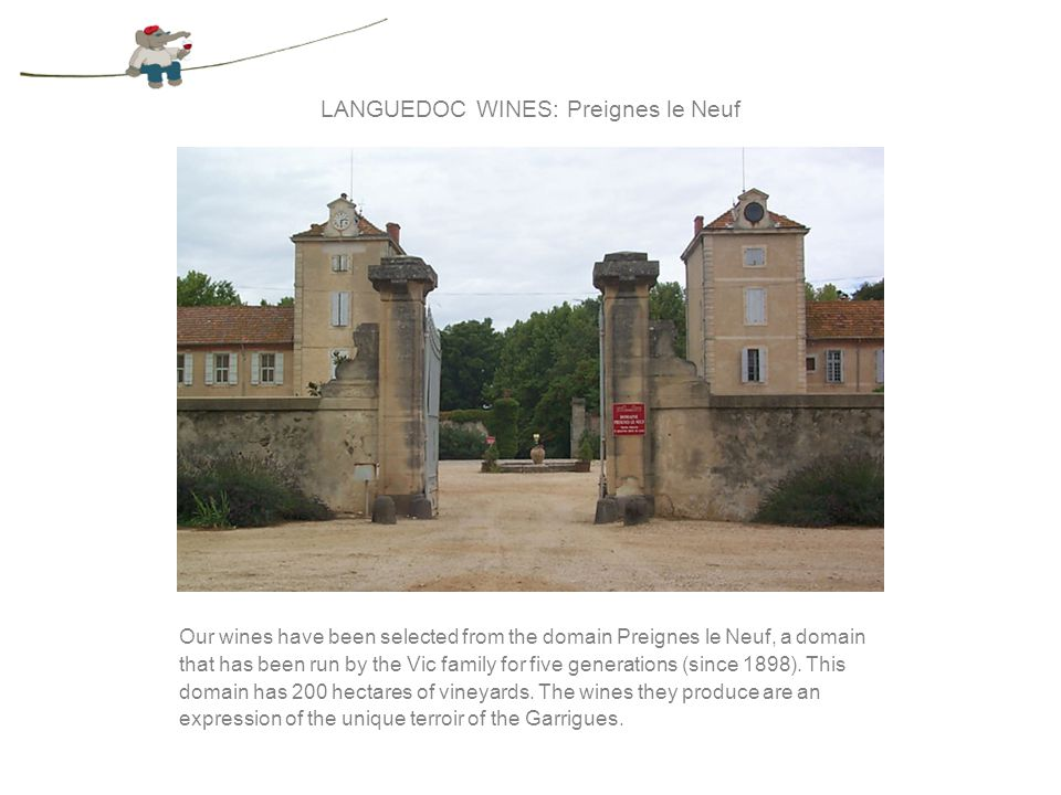 THE LANGUEDOC REGION The last decade has seen a focus on quality over quantity in this region.