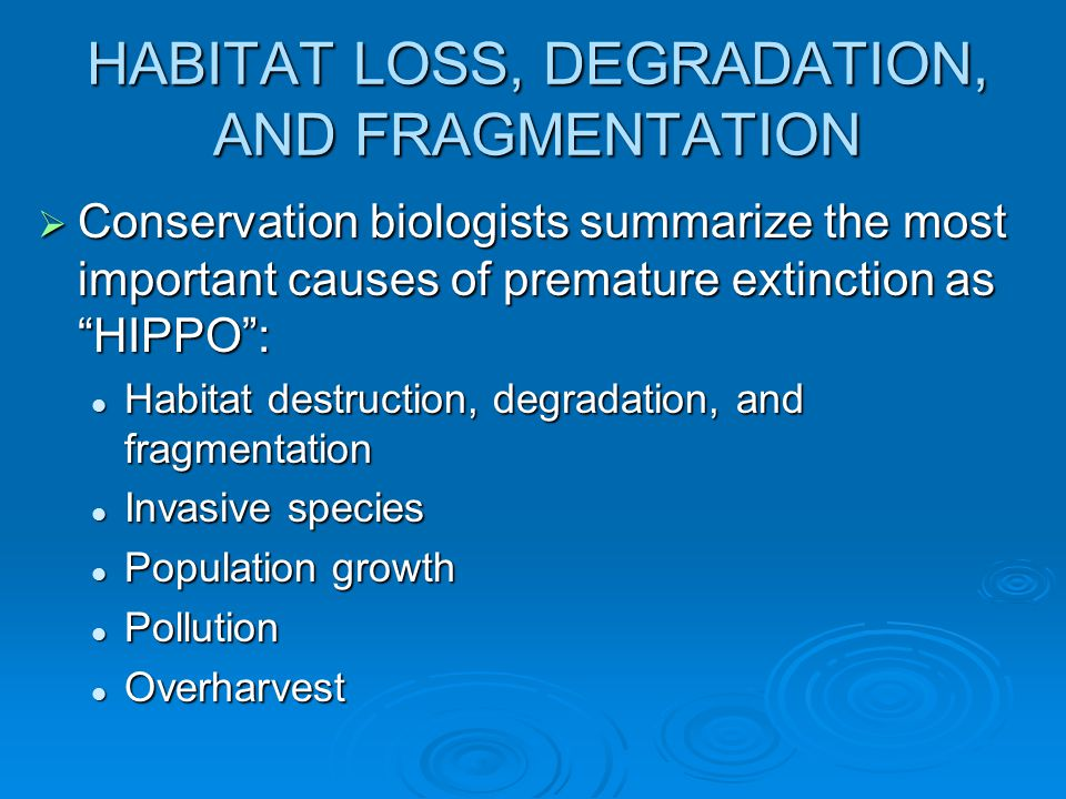 HABITAT LOSS, DEGRADATION, AND FRAGMENTATION  Conservation biologists summarize the most important causes of premature extinction as HIPPO : Habitat destruction, degradation, and fragmentation Habitat destruction, degradation, and fragmentation Invasive species Invasive species Population growth Population growth Pollution Pollution Overharvest Overharvest