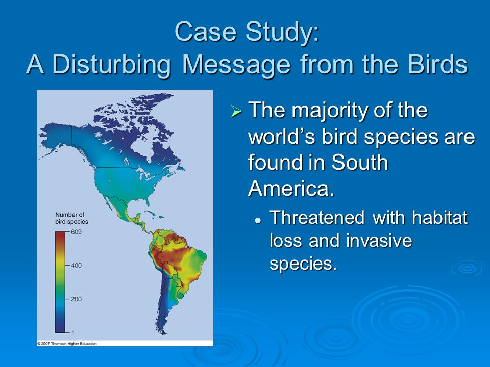 Case Study: A Disturbing Message from the Birds  The majority of the world's bird species are found in South America. Threatened with habitat loss an