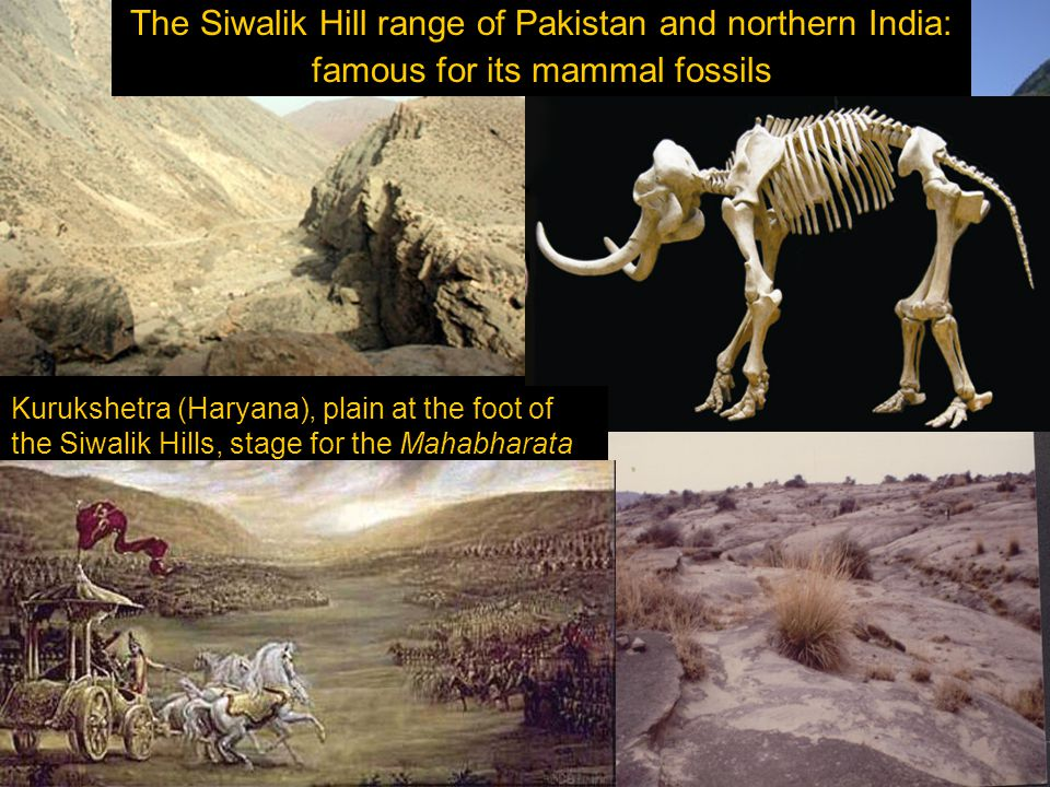 The Siwalik Hill range of Pakistan and northern India: famous for its mammal fossils Kurukshetra (Haryana), plain at the foot of the Siwalik Hills, stage for the Mahabharata