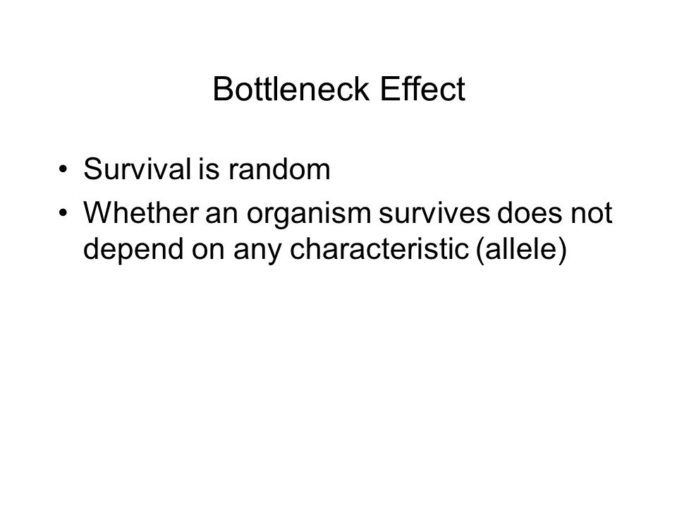 Bottleneck Effect Survival is random Whether an organism survives does not depend on any characteristic (allele)