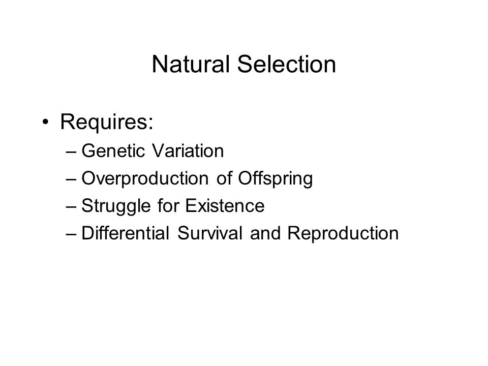 Natural Selection Requires: –Genetic Variation –Overproduction of Offspring –Struggle for Existence –Differential Survival and Reproduction