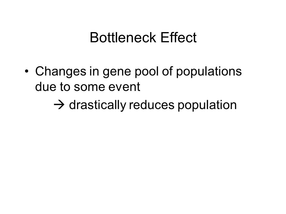 Bottleneck Effect Changes in gene pool of populations due to some event  drastically reduces population
