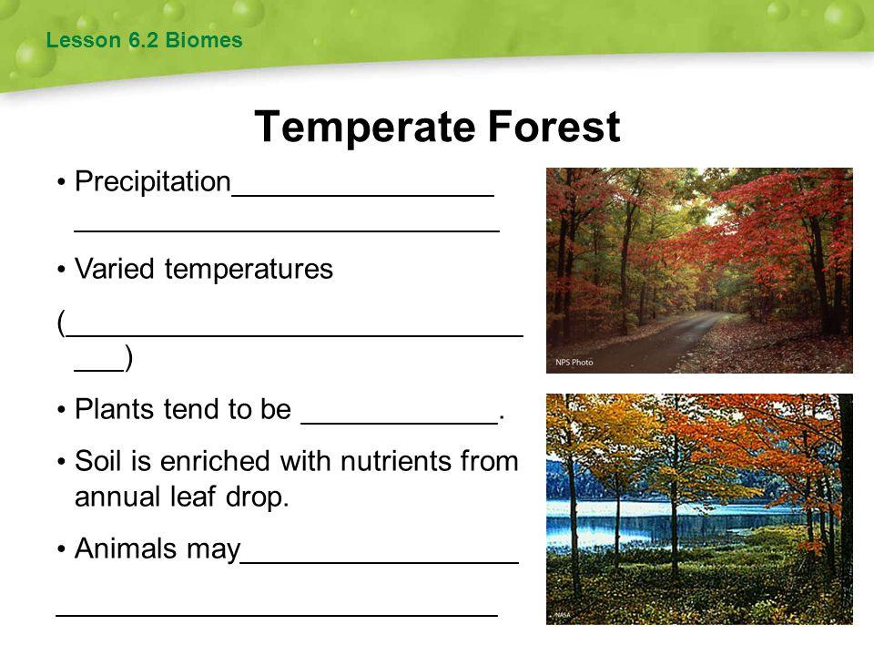 Temperate Forest Lesson 6.2 Biomes Precipitation________________ __________________________ Varied temperatures (____________________________ ___) Pla