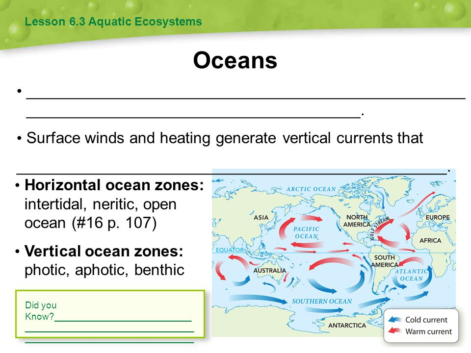 Oceans Lesson 6.3 Aquatic Ecosystems __________________________________________________ ______________________________________. Surface winds and heat